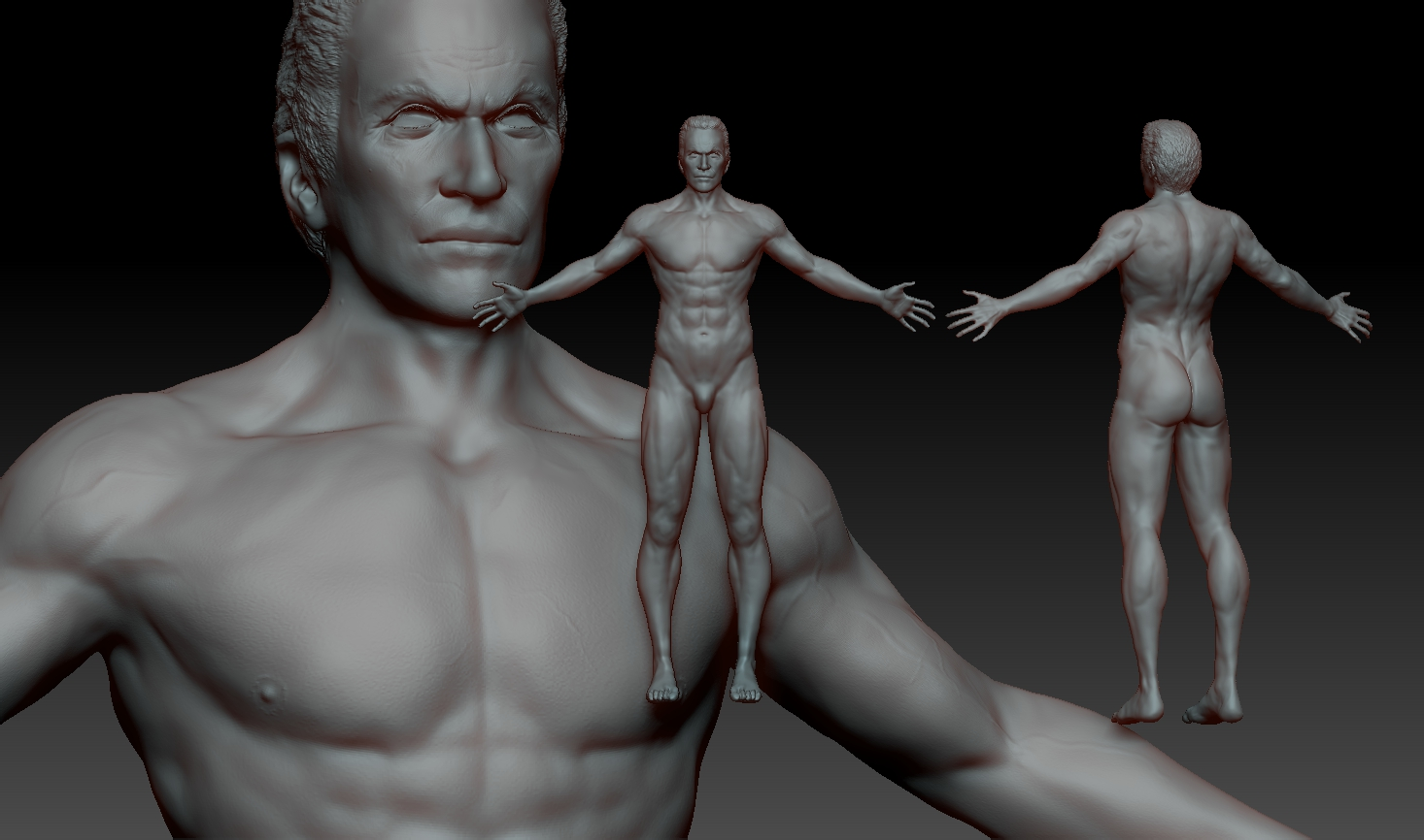 Anatomy Freelancers 3d