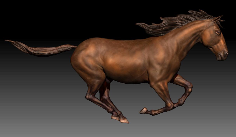 Horse | Freelancers 3D