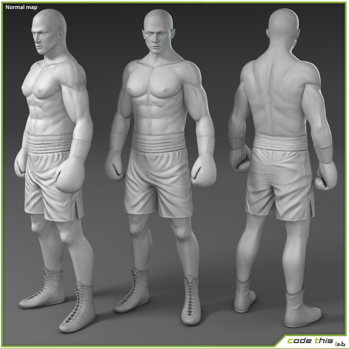 White Boxer CG 3D model