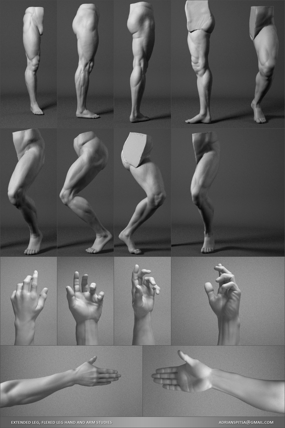 Digital Sculpting Studies 3D model - Leg & Hand Studies