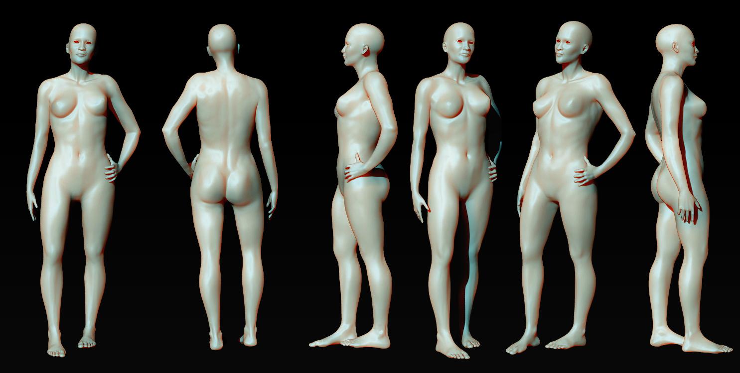 Anatomy | Freelancers 3D