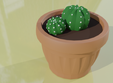 Two Cactus 3D model