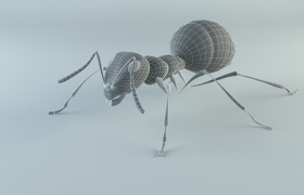 ANT sculpting 3D model - SCULPTED ANT