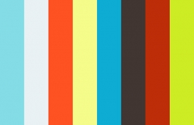 Pet fox 3D model - Animated